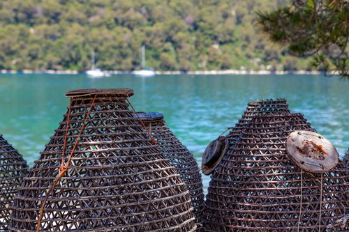 Traditional Croatian fishing traps. Island Mljet near Dubrovnik, Croatia.