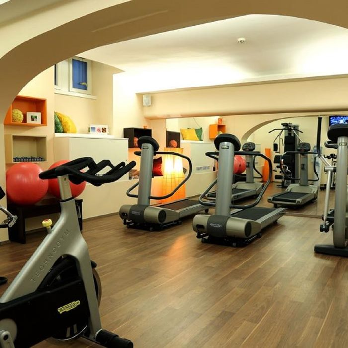 Palace Zagreb Hotel, Indoor gym