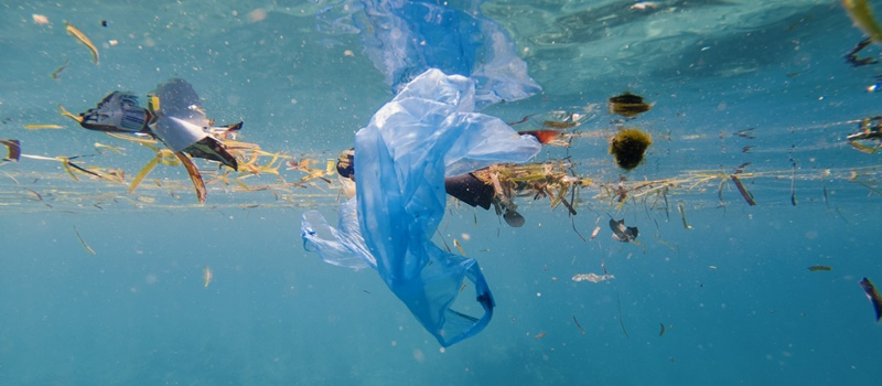 Plastic pollution in the sea